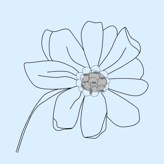 embroidery pattern -snowodrops-