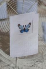 Passepartoutkarte -Schmetterling-